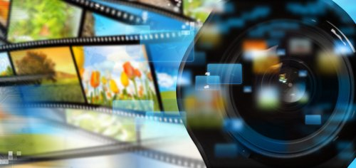 Sezione multimediale tassonomia