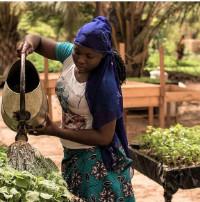 """Convegno """"Agroecologia, avanti tutta! Le filiere del cibo giusto e sostenibile nelle esperienze di Loumbilà in Burkina Faso e Padova"""""""