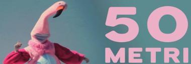"Anteprima Corsa a scopo benefico ""Pink Run 2020"" 380 ant"